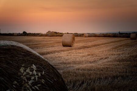Beautiful view of a wheat field, full of the characteristic bales. The shot is taken at sunrise during a summertime day Sicily, Italy 版權商用圖片 - 126131572