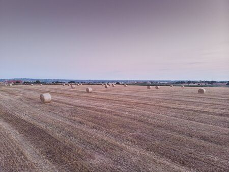 Aerial view of a field full of wheat bales. The shot is taken in a field in the southern Sicily, at sunrise. Sicily, Italy