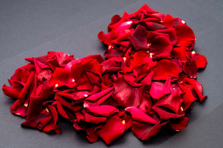heart made of rose petals photo