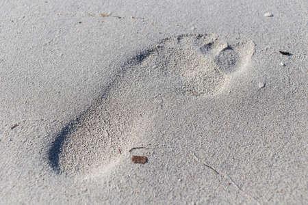sand mold: bigfoot
