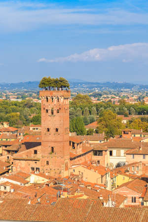 lucca: lucca tower