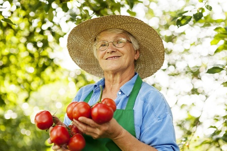 Senior woman with tomatoes photo