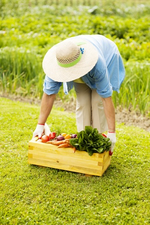 Senior woman picking up the box filled fresh vegetables photo