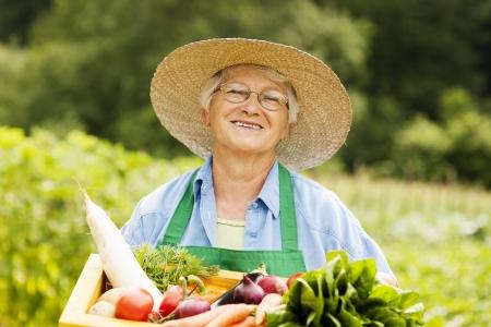 dikon: Mujer mayor que sostiene caja de madera con verduras