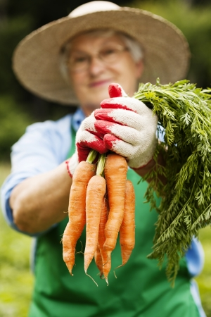 Senior woman with carrots photo
