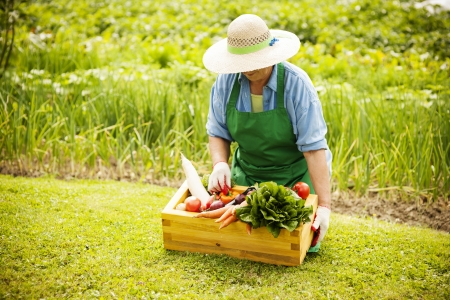 kneeling woman: Senior woman with vegetables Stock Photo