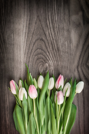 Bunch of spring tulips on wood  photo