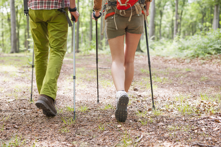hiking shoes: Good weather for hiking in forest
