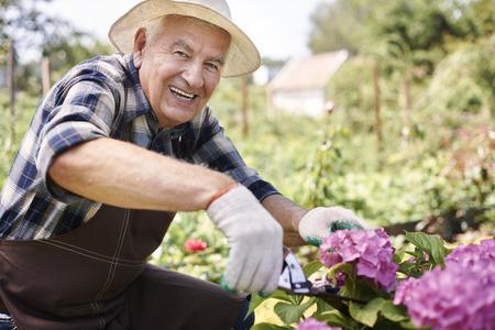 hombre con sombrero: Cortar unas flores para mi esposa