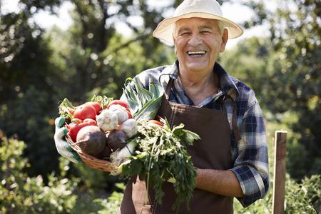 abundant: This year is very abundant in crops Stock Photo