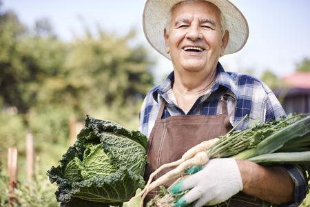 agricultor: El verano es mi estación favorita de todos Foto de archivo