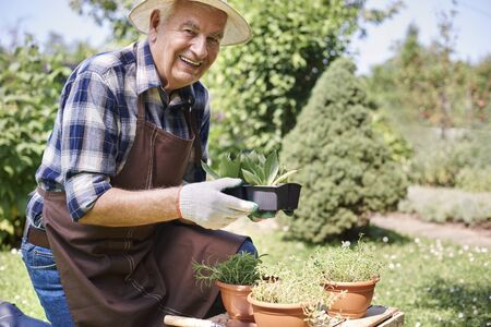 hombre con sombrero: I love working in the garden in the summer