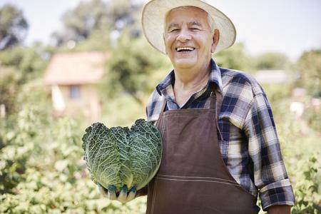 bondad: Mi jardín trae mucha bondad orgánica
