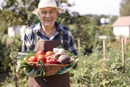 tomate: Maintenant, je peux aller � la cuisine et faire cuire quelque chose