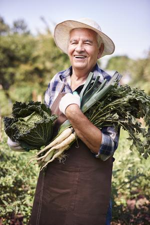 abundant: In this summer my crops are abundant