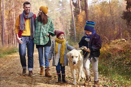 mujer con perro: Caminando con toda la familia en la estación del otoño