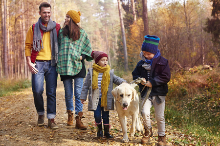 autumn path: Walking with all family in autumn season