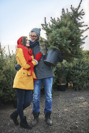 couple nature: Its going to be the most beautiful Christmas tree Stock Photo