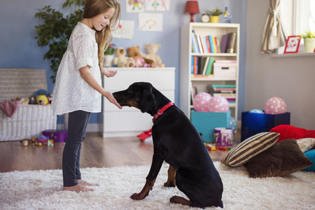 little girl eating: Little girl playing with dog at home