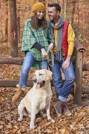 leaning by barrier: Couple spending time with dog in forest