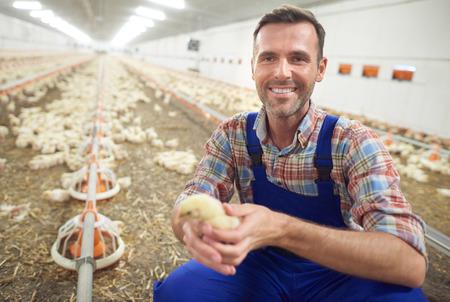 小さな鶏と農民 写真素材