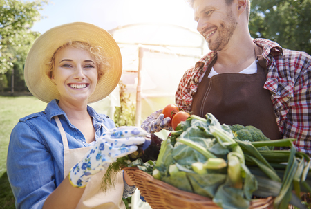 smiling woman in a greenhouse: Happy to grow some healthy vegetables Stock Photo