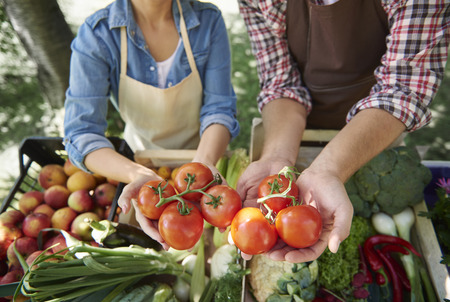 holding close: Close up of hands holding tomatoes Stock Photo