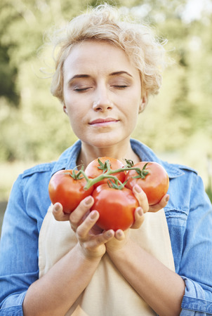 Fresh and delicious organic tomatoes