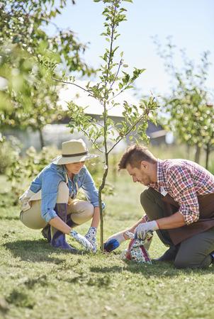 Paar van boeren het planten van de boom