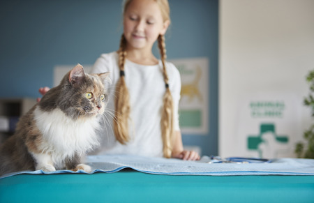 Girl and her cat at the vet