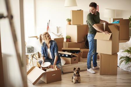작은 강아지와 함께 새 아파트에 젊은 부부 스톡 콘텐츠
