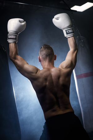 Muscular boxer with arms raised Imagens