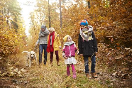 Family walk through forest path