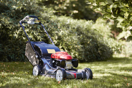 Shot of mower at garden