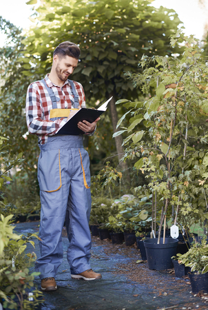 Man controlling growth of seedling  Stock Photo