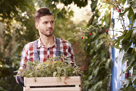 Man holding wooden crate with seedling