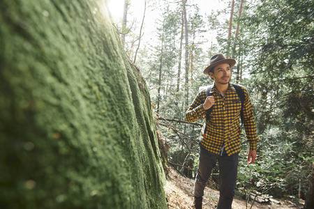 Male hiker with backpack walking through forest Stock Photo
