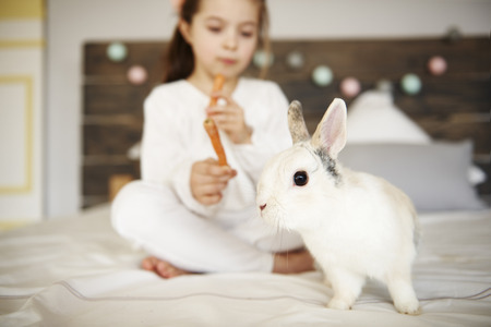 Shot of rabbit in bed and girl in the background