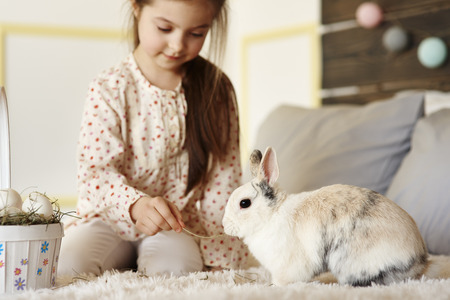 Girl having fun with rabbit on the bed Imagens