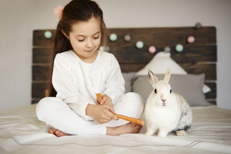 Girl feeding her rabbit on the bed
