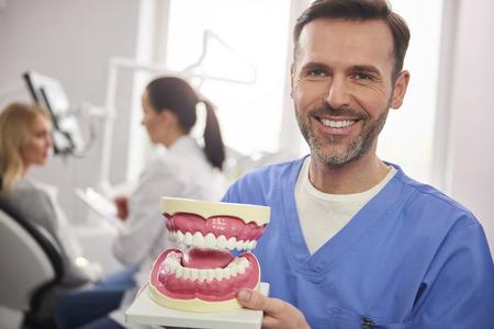 Lächelnder Zahnarzt, der einen künstlichen Zahnersatz zeigt Standard-Bild