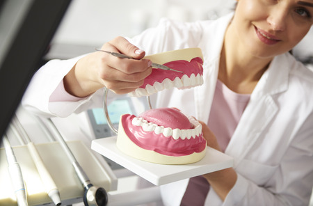 Dentist working with artificial dentures