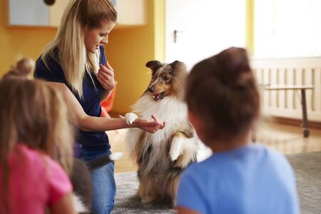 Female woman working with her dog during therapy dog Foto de archivo