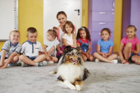Therapy dog and group of children in the background Reklamní fotografie