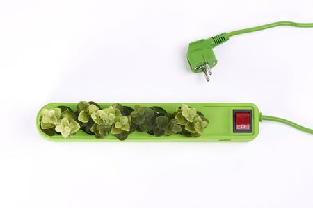 Electric socket with plants on white background Banque d'images - 127833498