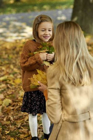 Girl picking leafs on the fall season Stok Fotoğraf