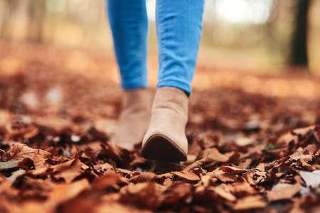 Human legs walking through autumnal leaves