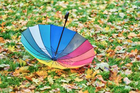 Colorful umbrella among autumnal leaves Stock Photo