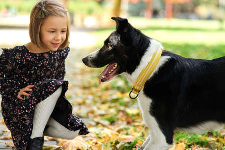 Happy dog and family in the background Stock Photo - 150635371