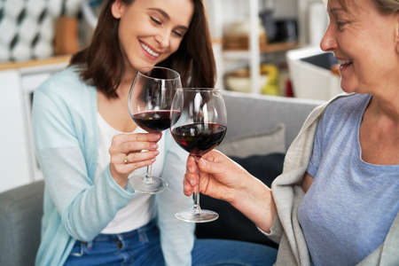 Mother and daughter toasting in wine during family reunion Foto de archivo - 167214312